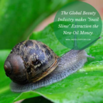 snail slime extraction business